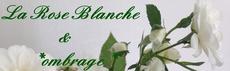 La Rose Blanche(ombrage)